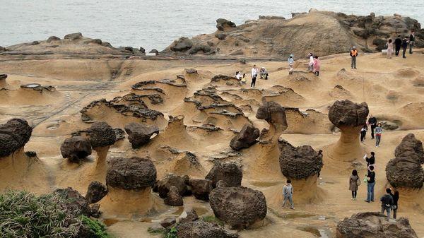 野柳包車-野柳地質公園以海蝕地景聞名